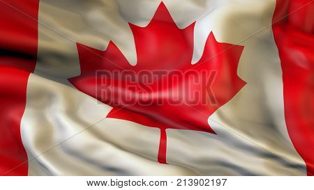 Waiving flag of Canada, Patriot of Canada