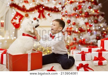 Child Getting Christmas Dog Present Happy Kid Boy under Xmas Tree with White Puppy