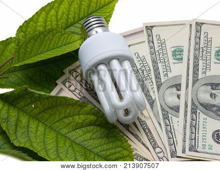 Luminescent lamps on a background from dollars and green leaves. The concept of energy saving