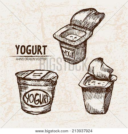 Digital Vector Detailed Line Art Packed Yogurt