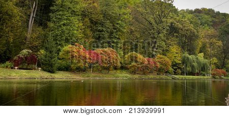 Beautiful autumn landscape with fog over lake, bright trees reflection in water, long exposure