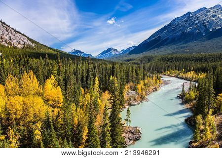 Warm sunny day in autumn. Abraham Lake is the beautiful lake in the Rockies. Dense forests cover the lake shores. The concept of ecological and active tourism