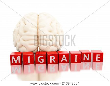 3D Human Brain Image & Photo (Free Trial) | Bigstock