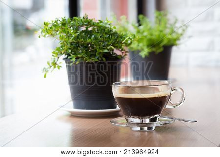 Coffee cup with house plant near the window
