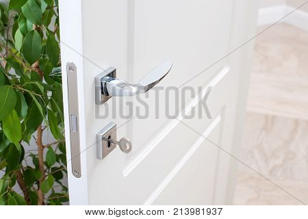 Closeup of door fittings. A white door with modern chrome handles door lock with key. Interior decor with green plant.