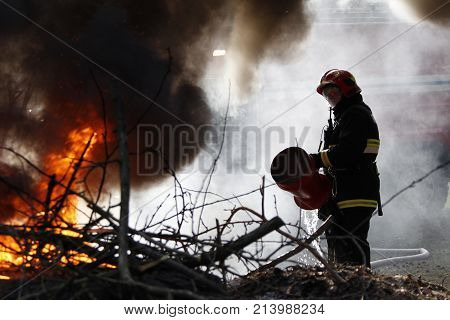 Belarus, Gomel City. Firefighting Of The Forest 06.04.2017.the Fireman Extinguishes With A Foam Fore