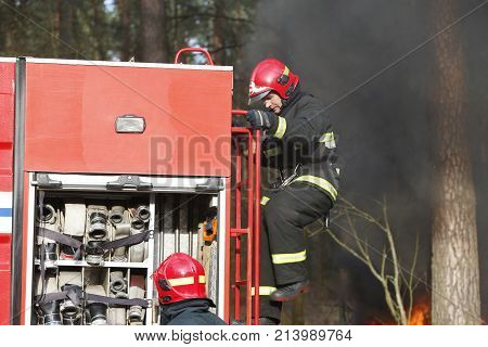 Belarus, Gomel City. Firefighting Of The Forest 06.04.2017.fire, Firefighter Preparing To Extinguish