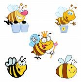 Different Happy Bee Cartoon Mascot Characters  Collection poster