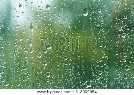 Close Up Of Fresh Water Drops On Window Glass On Background Of Green Leaves. Raindrops On Windowpane