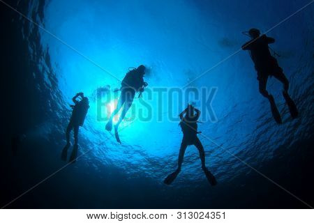 Scuba divers hover at safety stop. Silhouette against sun