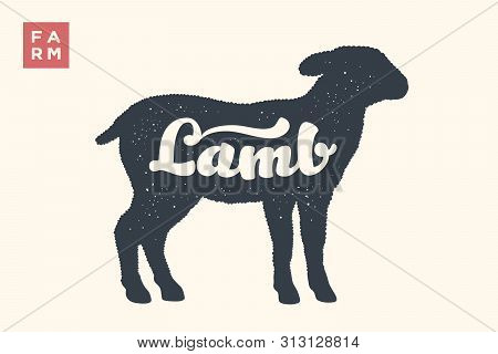 Lamb. Lettering, Typography. Animal Silhoutte Sheep Or Lamb