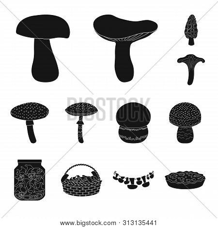 Vector Design Of Variety And Ingredient Sign. Set Of Variety And Food Stock Vector Illustration.