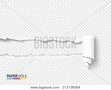 Vector Teared Off Paper Hole And Scroll With Rip Edges On Transparent Background. Empty Card Banner