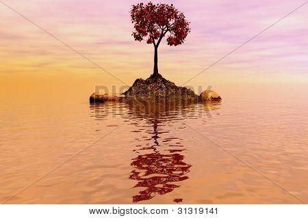 Island With A Tree