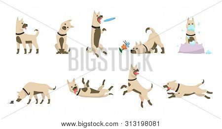 Cartoon Dog Set. Dogs Tricks Icons And Action Training Digging Dirt Eating Pet Food Jumping Wiggle S