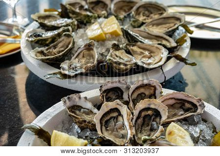 Fresh oysters with cut juicy lemon on two plates with ice in the restaurant. Wholesome and healthy seafood, Mediterranean cuisine. Restaurant delicacy. Shellfish Serving. Lunch on an oyster farm. poster