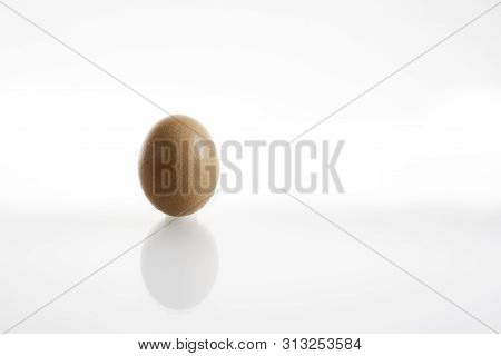 One hen or chicken egg isolated on white background with reflex on glass and copy space poster