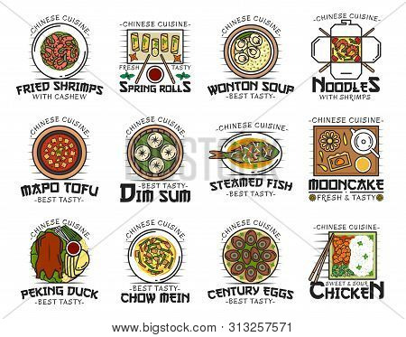 Chinese Cuisine Food Isolated Logos. Vector Fried Shrimps With Cashew, Spring Rolls And Wonton Soup,