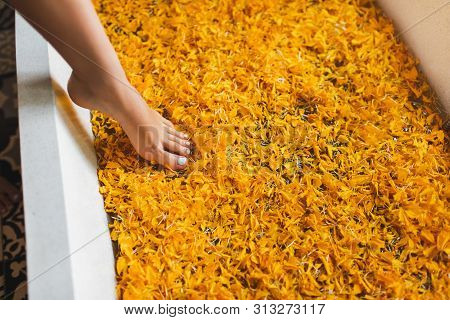 Beautiful woman leg with ideal pedicure in white tub with orange bright petals. Spa body care therapy concept. poster