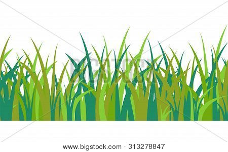Green Blue Grass Stalks, Tuft And Seamless Pattern Isolated On White Background. Vector Illustration
