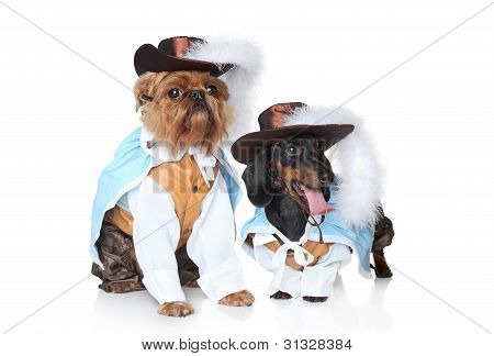 Two fashionable dog on a white background poster