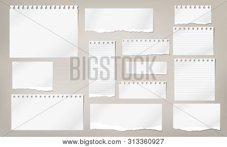 Set Of Torn White Note, Notebook Lined And Blank Paper Pieces Stuck On Light Brown Background. Vecto
