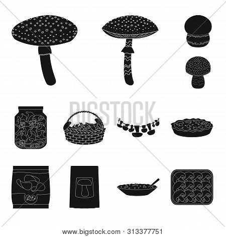 Isolated Object Of Variety And Ingredient Logo. Set Of Variety And Food Stock Vector Illustration.