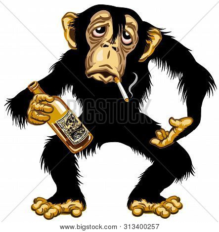 Cartoon Drunk Chimpanzee Great Ape Holding Empty Bottle Of Alcohol And Smoking A Cigarette. Chimp Mo