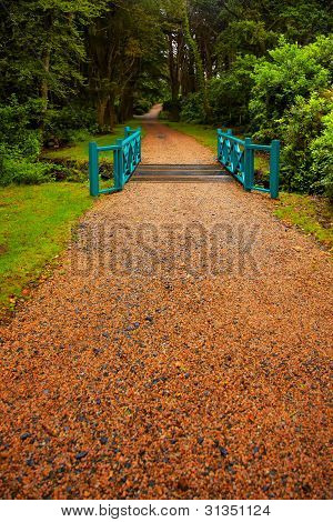 Alley in the gardens at Kylemore Abbey in summer on a overcast day Ireland. poster
