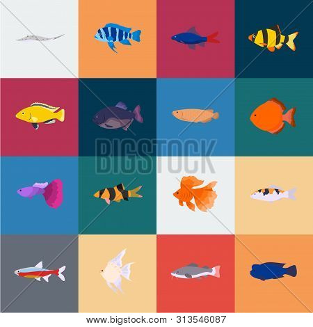 Different Types Of Fish Cartoon Icons In Set Collection For Design. Marine And Aquarium Fish Bitmap