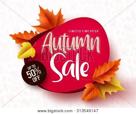 Autumn Sale Vector Banner. Autumn Sale And Discount Text In Red Space With Maple Leaves In White Tex