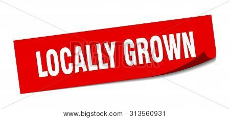 Locally Grown Sticker. Locally Grown Square Isolated Sign. Locally Grown