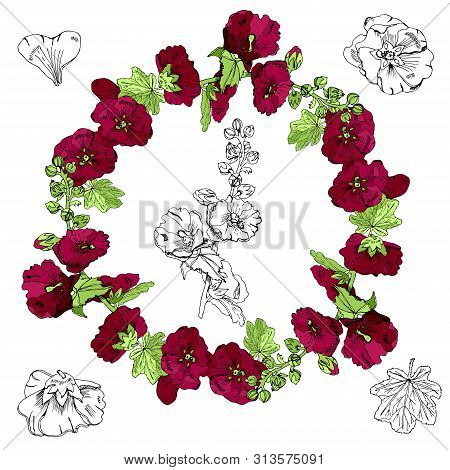 Set With Wreath,  Bouquet And Single Flowers Of Burgundy Mallow And Green Leaves. Hand Drawn Monochr