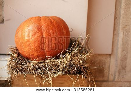 Pumpkin On Hay In City Street, Holiday Decorations Store Fronts And Buildings. Halloween Street Deco