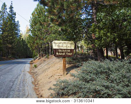 Sign Trail Of 100 Giants Trailhead In Sequoia National Forest At The Street