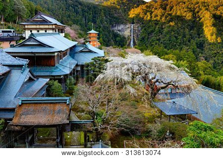 Overview of the Nachi taisha landscape with Japanes garden, temple, pagoda and waterfall, Wakayama, Japan