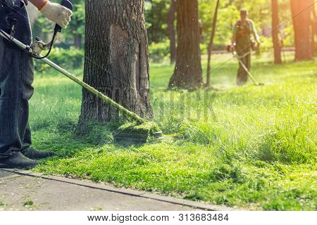 Worker Mowing Tall Grass With Electric Or Petrol Lawn Trimmer In City Park Or Backyard. Gardening Ca