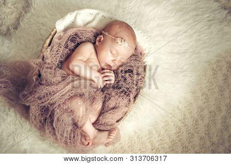 Newborn Baby Girl Sleeping In A Basket. Concept Shooting Newborns, Innocence