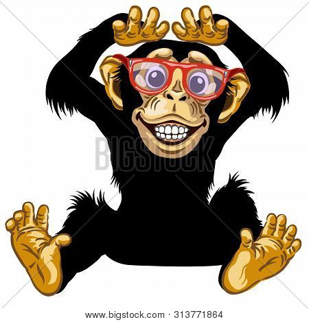 Cartoon Chimp Ape Or Chimpanzee Monkey With Glasses Smiling Cheerful With A Big Smile On Face Showin