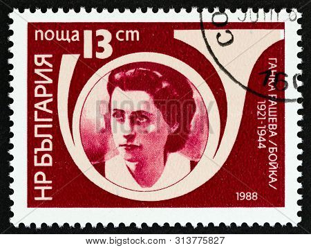 Bulgaria - Circa 1988: A Stamp Printed In Bulgaria From The