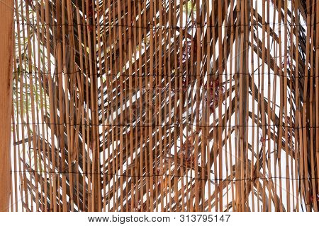 Background Of Reed. Reed Isolated. Traditional Fence Made Of Bamboo Reed