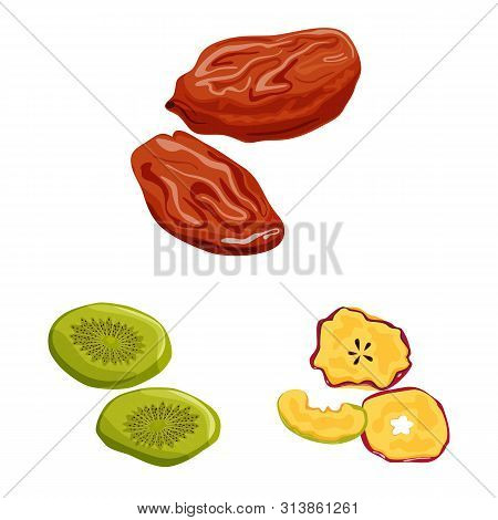 Vector Illustration Of Fruit And Dried Sign. Collection Of Fruit And Food Vector Icon For Stock.