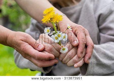 Close Up Picture Of Elderly Woman With Dementia Holding Flower Bouquet Given By Caretaker - Hands