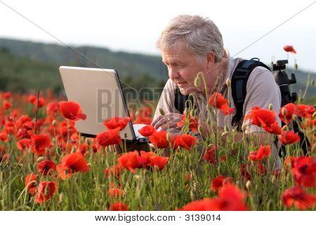Photographer In Poppy Field