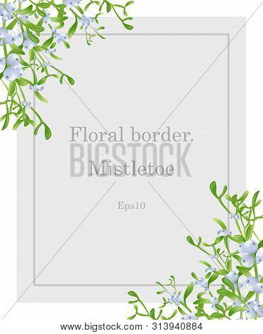 Mistletoe.  Mistletoe Sprig For Christmas Cards And Decorative Design.mistletoe Blue Vector Christma
