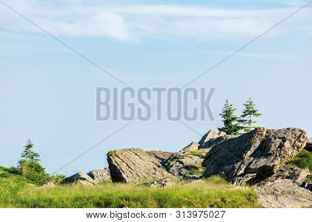 Beautiful Summer Scenery Of Fagaras Mountains. Spruce Trees On The Huge Boulders On The Grassy Steep