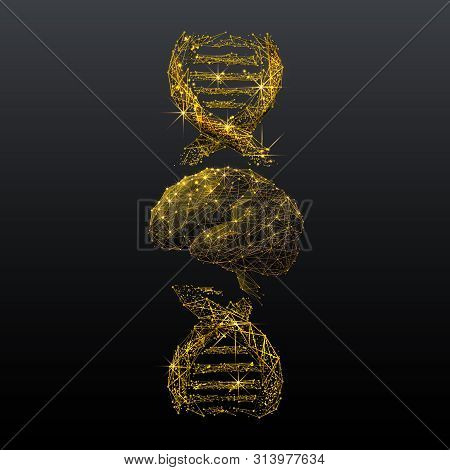 Brain And Dna Spiral Low Poly Wireframe Illustration. Gold Polygonal Neurons Cells Connections Mesh