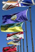 Canadian flags along the river valley in Edmonton poster