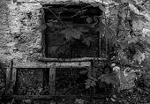 A door in a derelict stone house in the small historic hill village of Obenetto in Friuli-Venezia Giulia, north east Italy poster