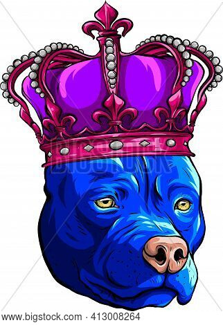 Colored Pitbull Dog With Crown Vector Illustration